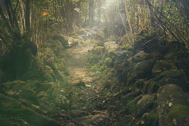 鹿児島のパワースポットおすすめ13選!定番や穴場を巡ってご利益を得よう