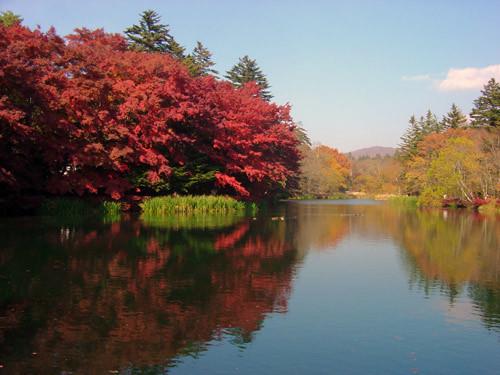 軽井沢の1度は泊まってみたいおすすめペンション11選!おしゃれで人気の宿は?
