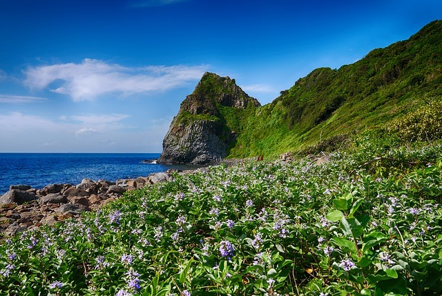 糸島は海水浴場がいっぱい!おすすめスポットや人気の場所をまとめました