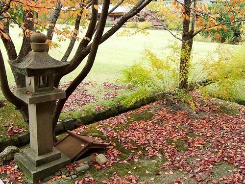 奈良のお寺巡りは一人でも楽しい!穴場スポットからイベントまで教えます