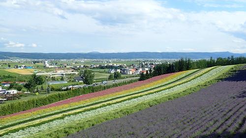 札幌から富良野へ行くには?バス・車・JRの所要時間や料金を徹底比較