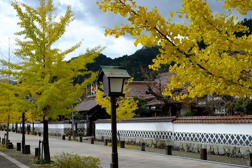 山陰の小京都・津和野のおすすめ観光スポット!城下町の風情を楽しめる名所は?