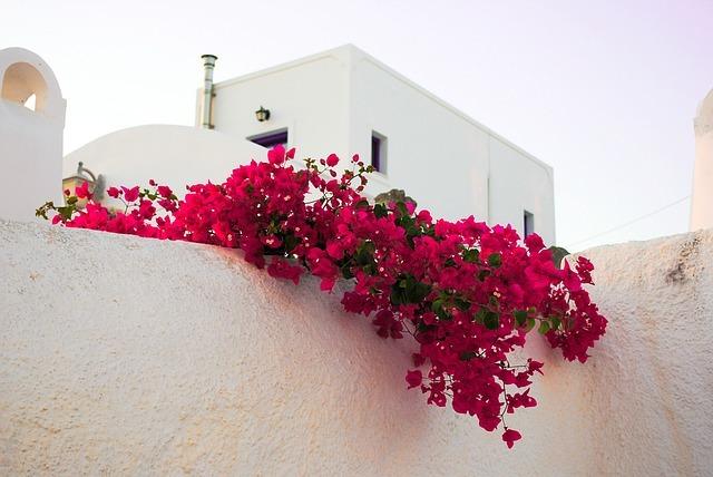 高知にあるヴィラサントリーニが話題!日本でエーゲ海のホテルが楽しめちゃう?