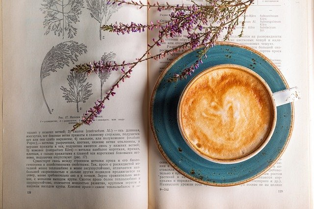 四谷のおしゃれカフェ特集!駅近のおすすめカフェから夜まで過ごせる穴場も紹介