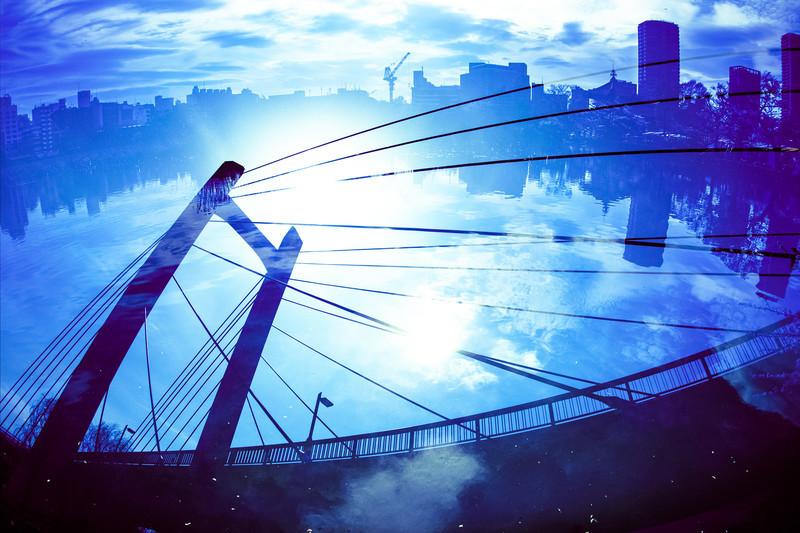 絶景の吊り橋・ほしだ園地の「星のブランコ」を体験にし大阪へ行こう!