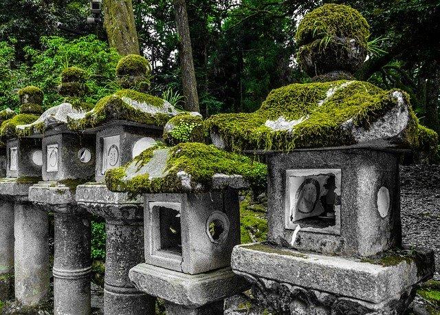 戸隠神社の奥社を参拝しよう!営業時間やアクセス・御朱印のいただき方は?