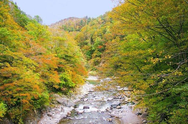 新潟の月岡温泉は美人の湯としても有名!温泉街の楽しみ方や人気観光スポットは?
