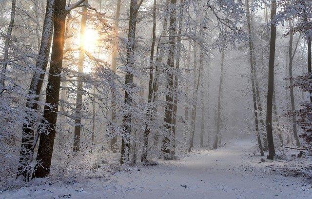 冬の草津温泉旅行は雪道に注意!道路情報・服装などお役立ち情報まとめ