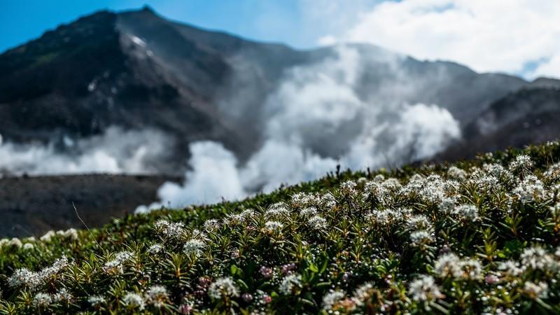北海道・旭岳を登山で楽しもう!初心者必見の所要時間・装備・コース情報まとめ