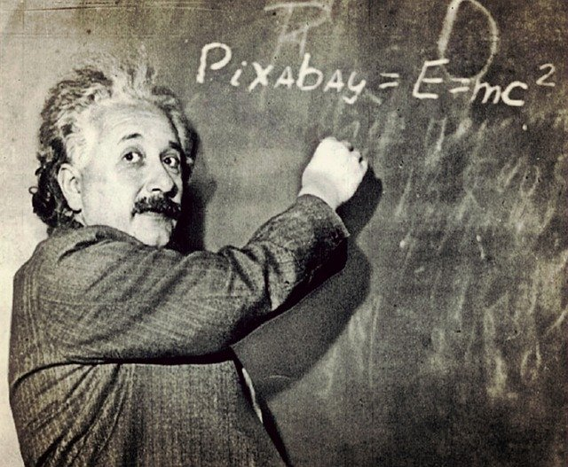 医学博物館・ムター博物館へ行こう!アインシュタインの脳があるって本当?