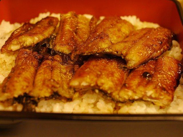 幻のグルメ・青うなぎを食べたい!東京で食べられるお店や値段まとめ