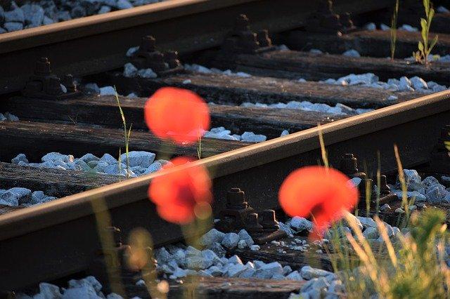 名古屋から大阪へ行くなら近鉄特急が断然おすすめ!料金や所要時間は?
