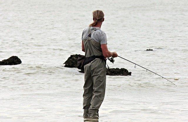 静岡の釣りスポット情報!初心者でも安心の釣り場とおすすめポイントも紹介