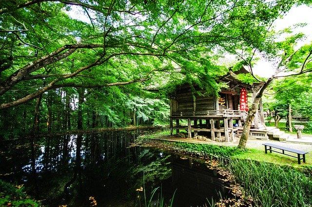 赤坂の日枝神社は大都会のパワースポット!アクセスやご利益・御朱印情報まとめ