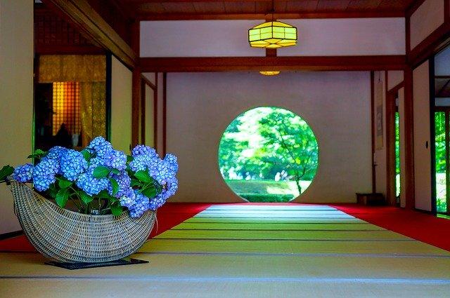 鎌倉・明月院にあじさいを見に行こう!見頃や混雑状況・周辺のランチ情報も紹介!