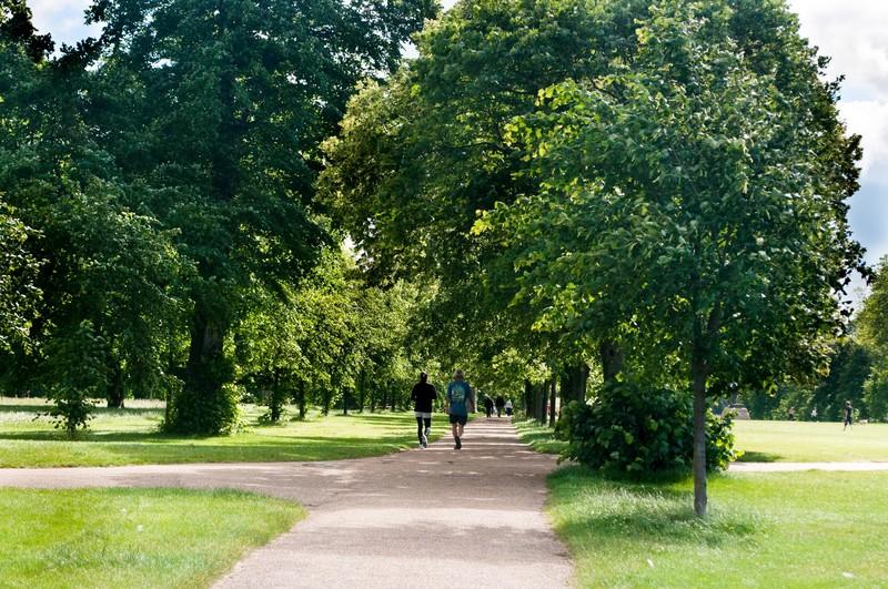 のんびり過ごしたい人におすすめの二子玉川公園をご紹介!人気のアクティビティも