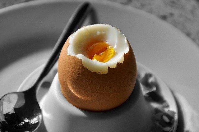 ティファールの電気ケトルで簡単ゆで卵!作り方や注意点をまとめ!