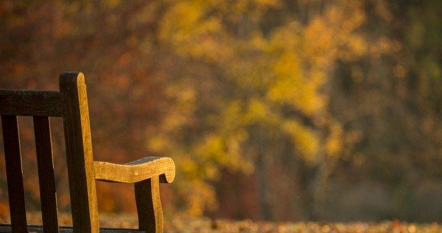 秋ヶ瀬公園はさいたま市で人気のレジャースポット!施設情報やアクセス方法は?
