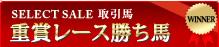SELECT SALE取引馬 重賞レース勝馬