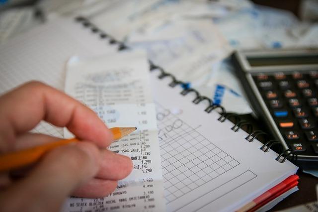 家計簿を付ける手