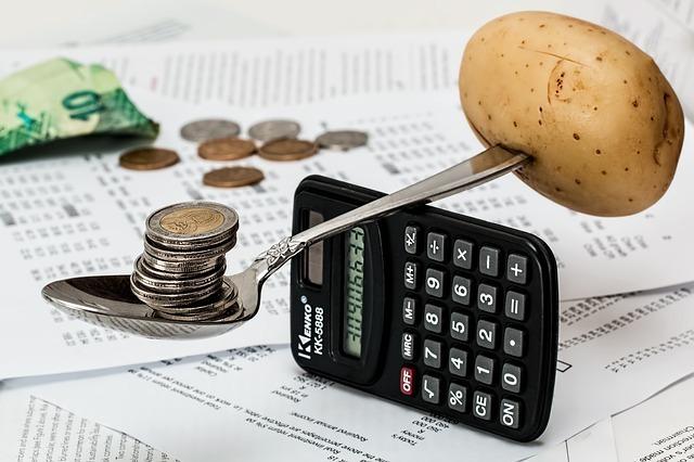電卓の上でバランスをとる芋とコイン