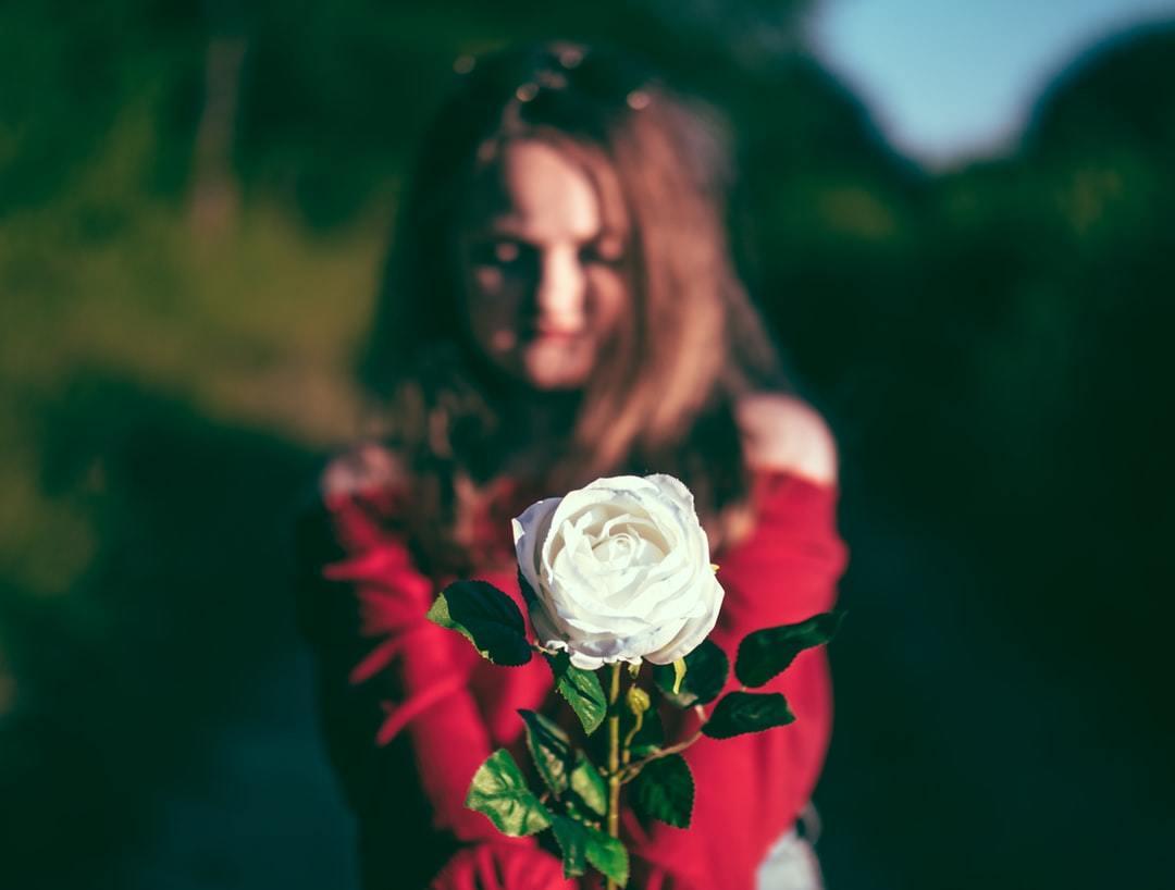 白い 言葉 た 花 枯れ の バラ