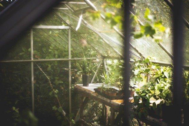 温室 自作