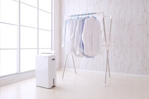除湿器の電気代を安くする方法は?おすすめの種類や節約術を詳しく紹介!