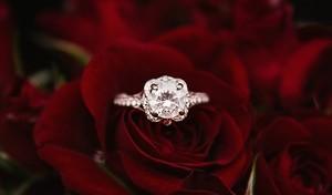 婚約指輪と結婚指輪の違いと意味を徹底解説!歴史や選び方も紹介!