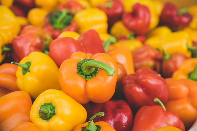 パプリカの栽培は難しい?育て方のコツや鮮やかな色を出す方法も解説