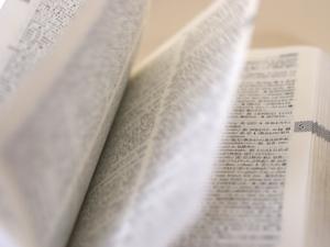 当たり前を英語で表現すると?様々な表現方法や会話の例文も紹介!