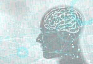 「リビドー」の意味や使い方を詳しく解説!心理学的な5つの発達段階とは?
