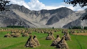 チベット体操とはどんな効果がある?全儀式のやり方や注意点を知ってキレイに!