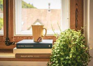 本を断捨離する方法とは?後悔しない捨て方や本棚を整理するやり方も紹介!