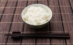 冷蔵庫に入れる米びつならコレがおすすめ!野菜室に収まるタイプあり!