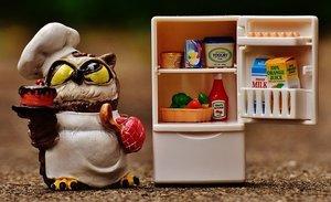 冷蔵庫の電源を入れるときの注意点!引っ越し前後の対処法や抜き差しの手順は?