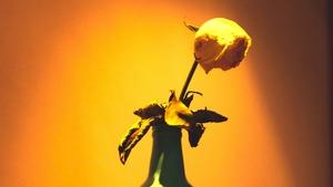 100均ダイソー・セリアは花瓶の種類も豊富!人気デザインやリメイク術を紹介!