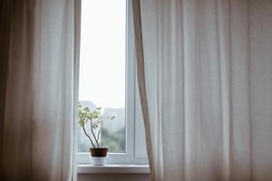 突っ張り棒カーテンのおしゃれ活用術!簡単な目隠しや棚の作り方を紹介!