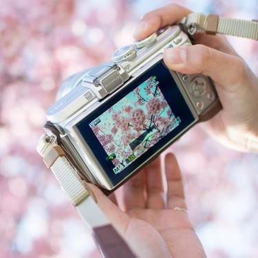 デジカメ(デジタルカメラ)おすすめ21選【2020】コンパクトモデルが人気!