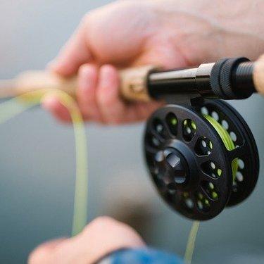 国府津海岸で釣りをしよう!おすすめの釣り場から釣果についても徹底解説!