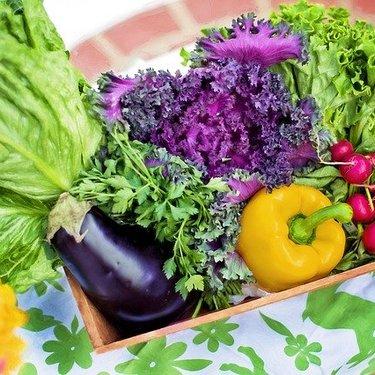夏野菜の人気ランキングTOP25!旬のシーズンや美味しい食べ方も紹介!