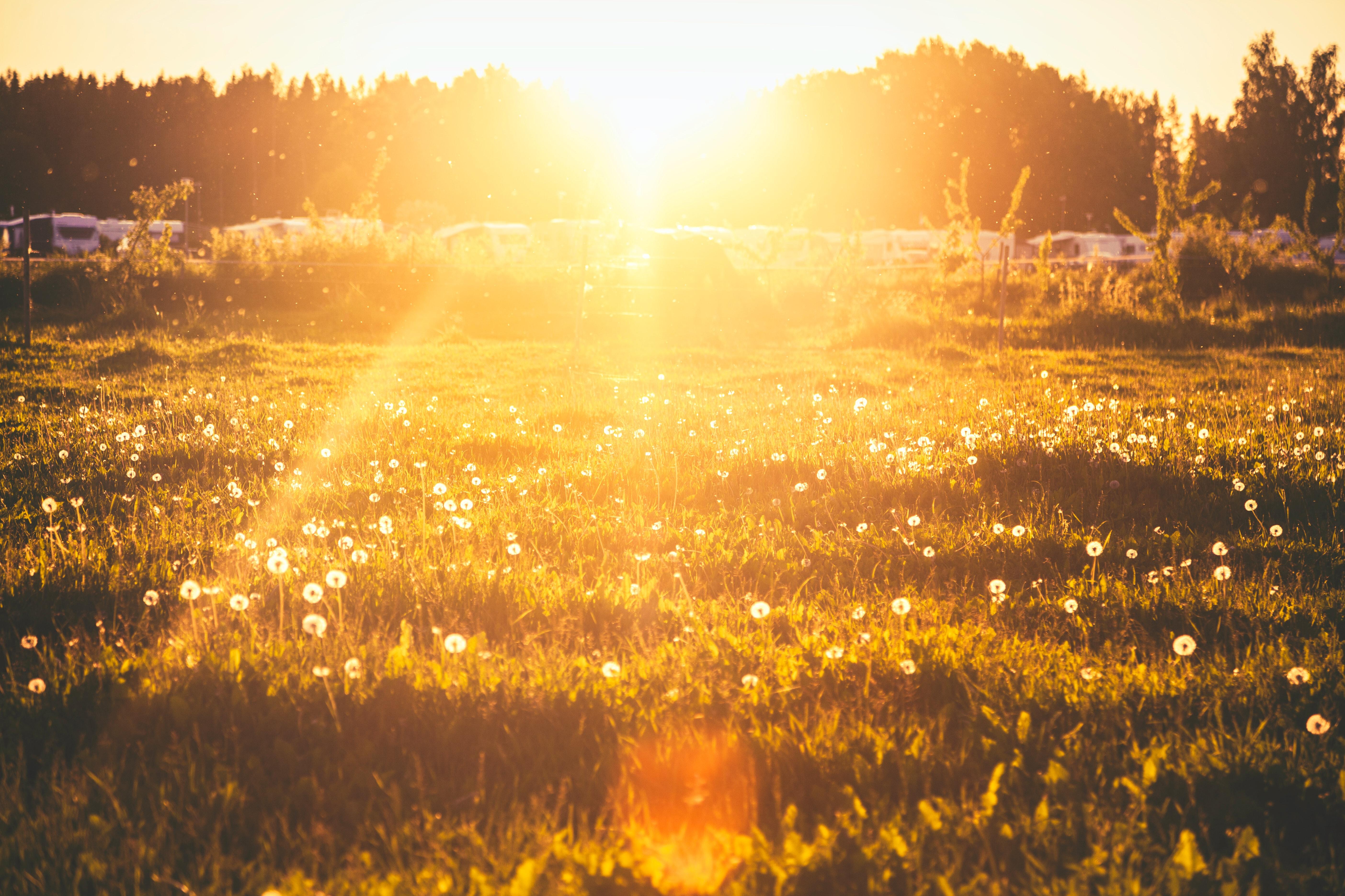 日焼け対策の効果的な方法は?紫外線から肌を守るアイテムや人気グッズを紹介!