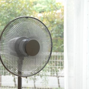 扇風機の掃除方法!簡単にほこりをキレイにする手順や洗い方などをチェック!