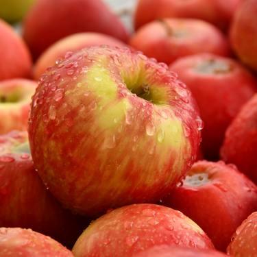 りんごって太るの?カロリーや糖質・ダイエットに効果的な食べ方も!