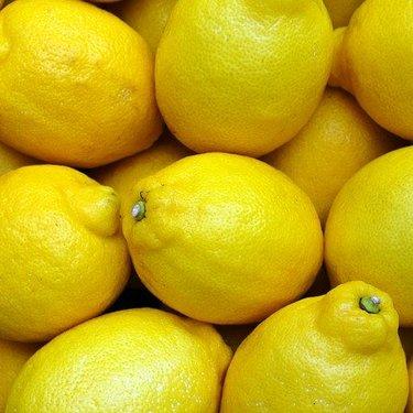 レモンの旬や収穫時期はいつ?美味しい品種や選び方のポイントも紹介!
