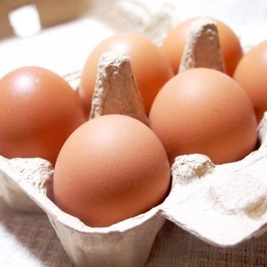 おつまみになる卵料理を厳選!お酒の種類別にピッタリのメニューは?
