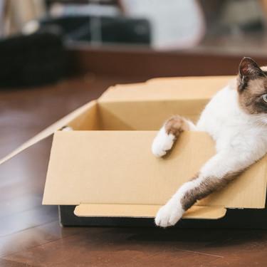 ダンボールの簡単リメイク術!インテリアや家具など収納に使えるアイデアも!