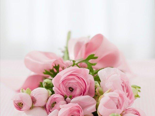 「バラ」の花言葉とは?意味や使い方を解説!