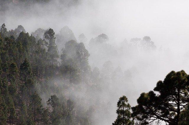 「五里霧中」の意味とは?意味や使い方を解説!