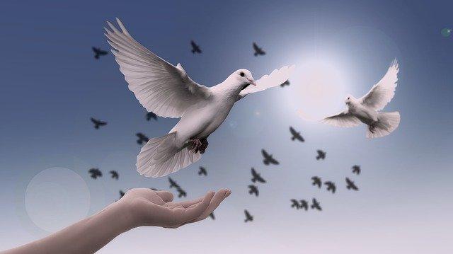 「人事を尽くして天命を待つ」の意味とは?意味や使い方を解説!
